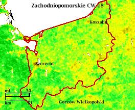 NDVI Satellitenbild Zachodniopomorskie KW18 Mittelwert 1995-2006