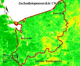 NDVI Satellitenbild Zachodniopomorskie KW19 Mittelwert 1995-2006