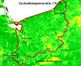 NDVI Satellitenbild Zachodniopomorskie KW20 Mittelwert 1995-2006
